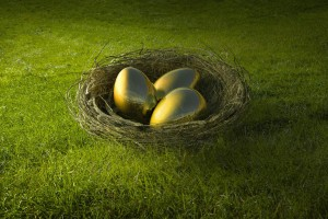 Golden eggs in bird